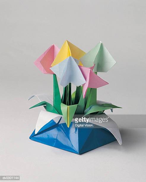 Flowers in paper box