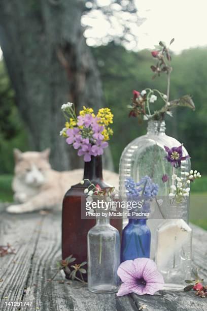 Flowers in small bottles in garden