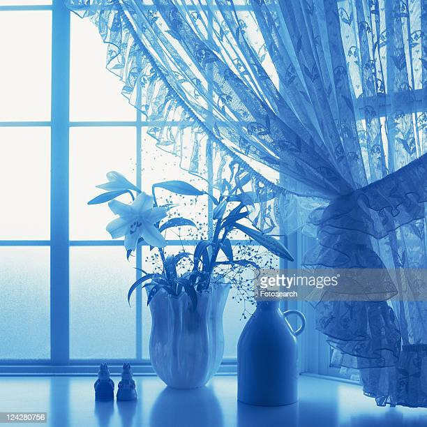 Flowers in the vase by the window, Close Up, Toned Image, Silhouette