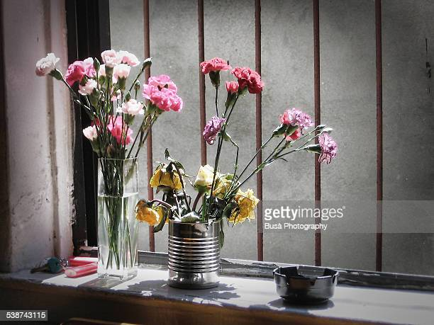 Flowers in tin cans by a window with a metal grate