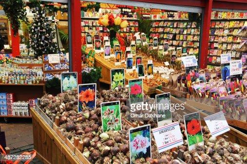 Flowers Market : Stock Photo