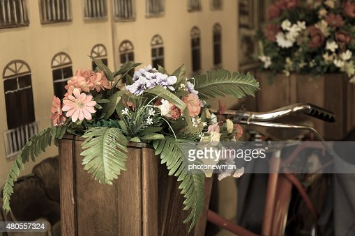 Flowers on a bicycle : Stock Photo