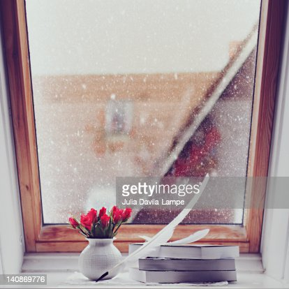 Flowers on garret window sill