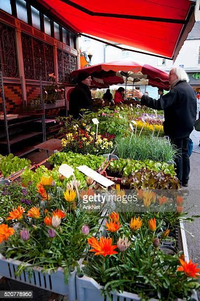 Fleurs à vendre à Les Halles marché à Dijon, France