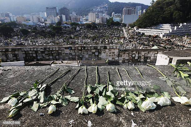 Flowers rest on a crypt during Day of the Dead festivities at Sao Joao Batista cemetery on November 2 2014 in Rio de Janeiro Brazil Brazilians often...