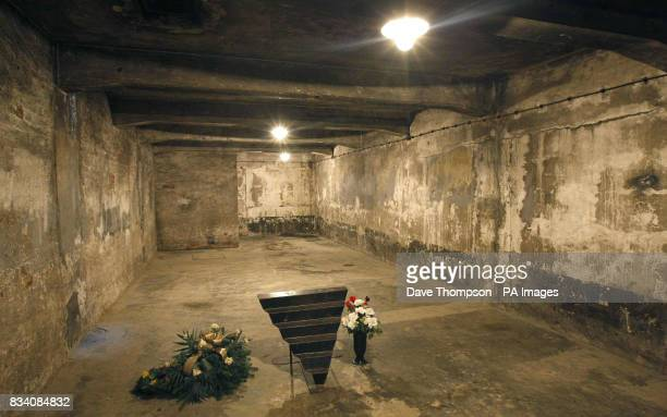Flowers stand inside the gas chamber at the camp known as Auschwitz I Today Sunday January 27th is International Holocaust Memorial Day which marks...