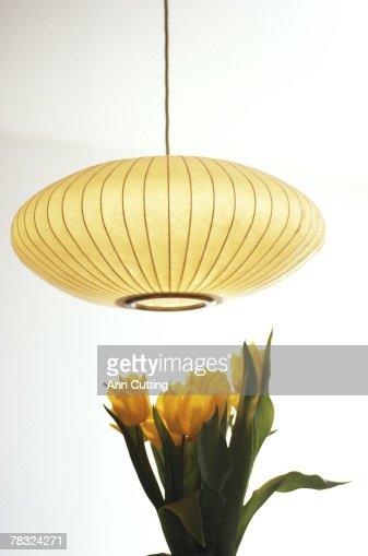 Flowers under hanging lamp : Stock Photo