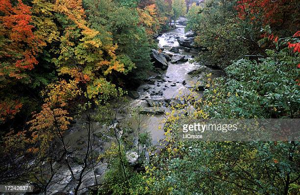 流れる川の秋の色、クリーブランド(オハイオ州)