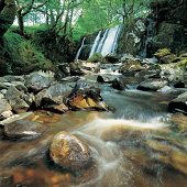 Flowing stream and waterfall
