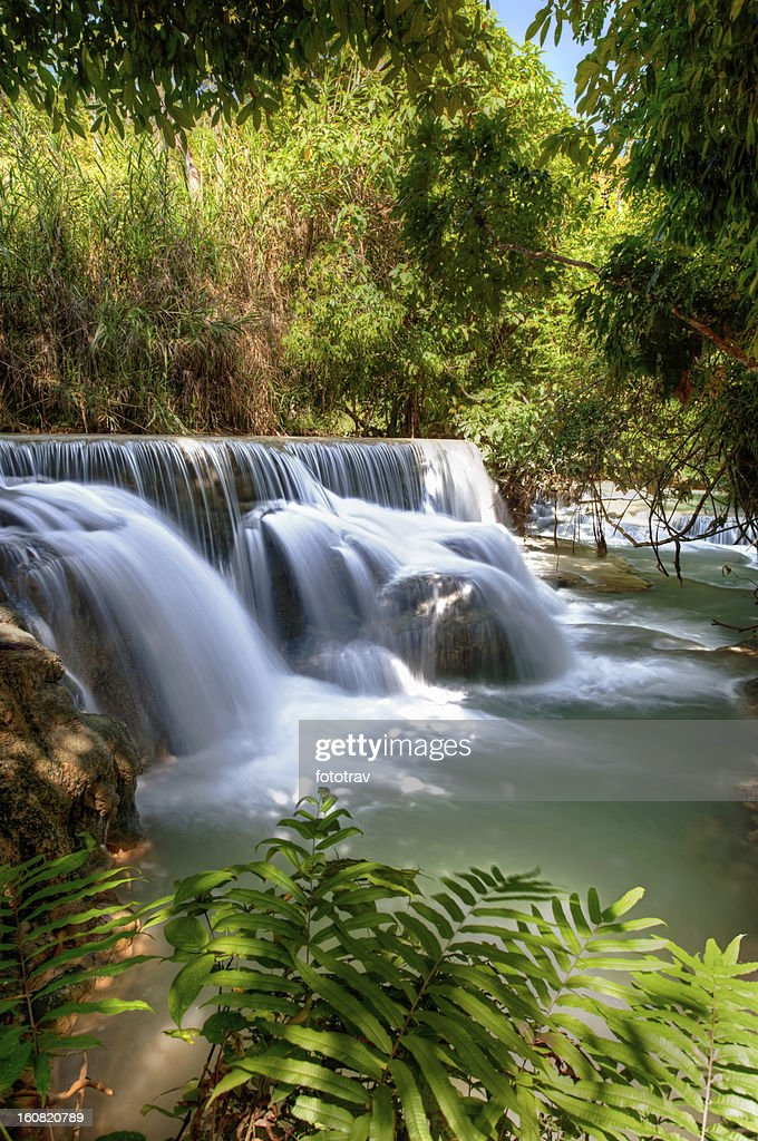 Flowing water under trees - Laos waterfall : Stock Photo