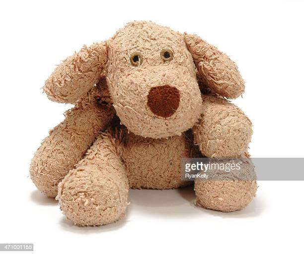 Flauschige Hund