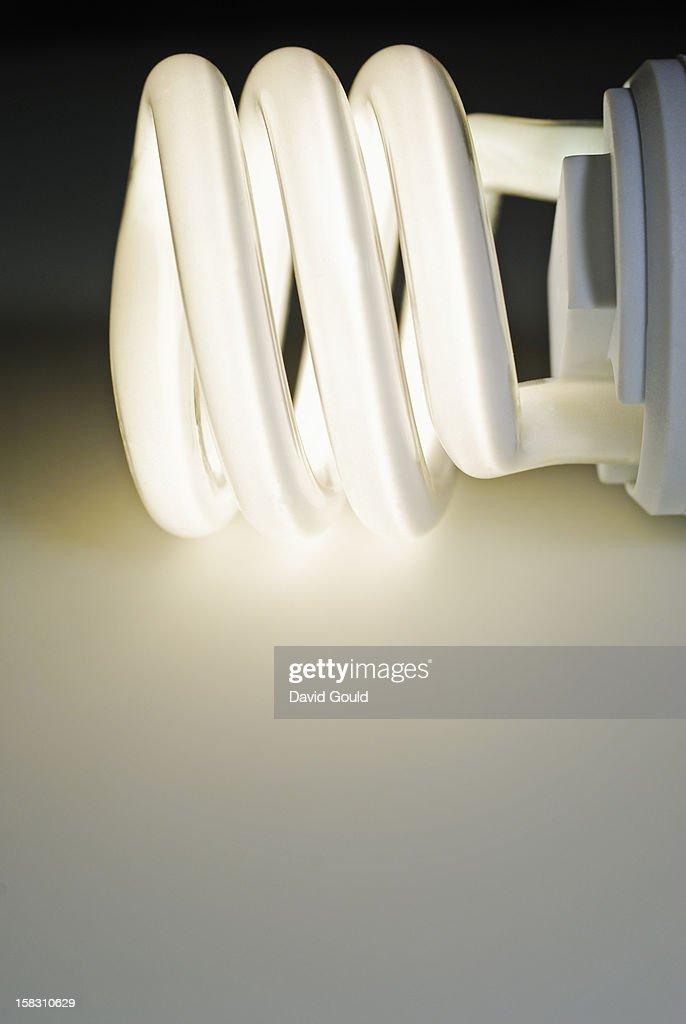 Fluorescent energy saving light bulb : Stock Photo