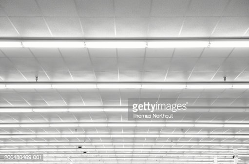 Fluorescent lights on ceiling, low angle view : Stock-Foto