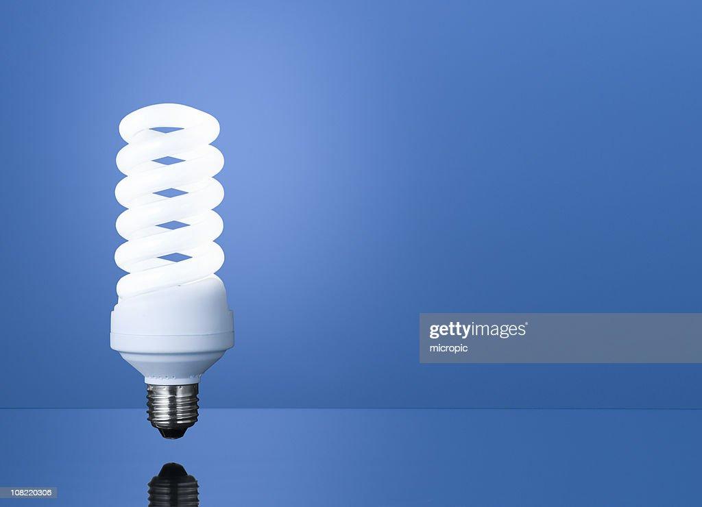 Fluorescent : Stock Photo