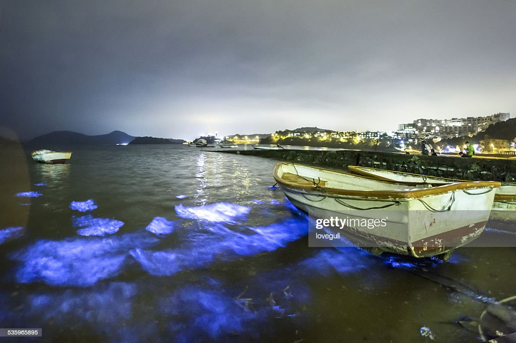 Fluorescent seashore and landscape  night view in Hongkong : Stock Photo
