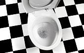 Flushing toilet bowl landscape