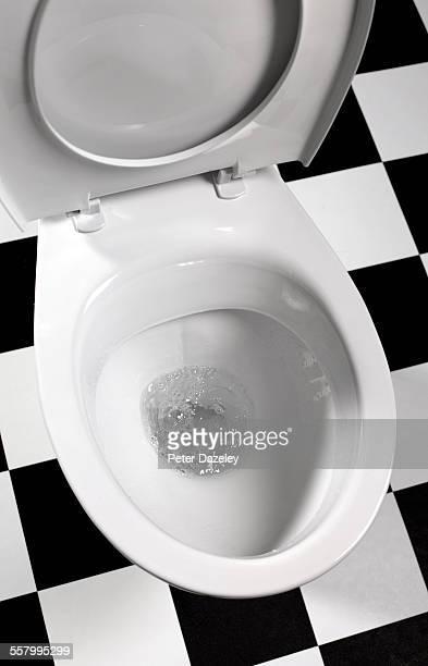 Flushing toilet bowl upright