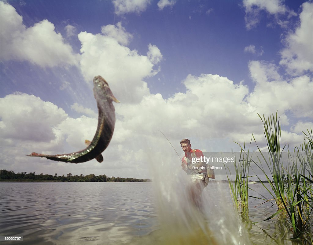 Fly Fisherman Reeling In Jumping Catch : Stockfoto