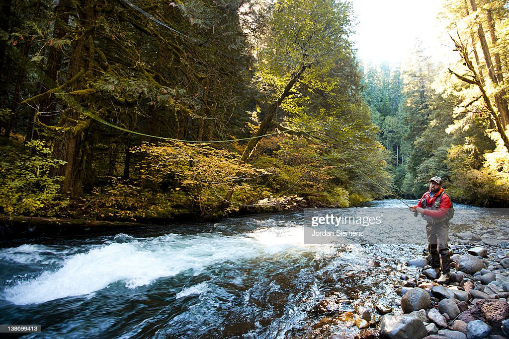 Fly fishing an Oregon creek. : Stock Photo