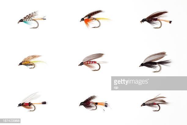 La pêche à la mouche sèche vol