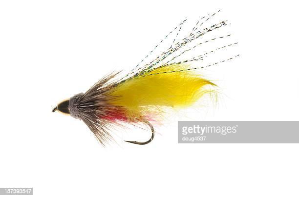 Appât de pêche à la mouche