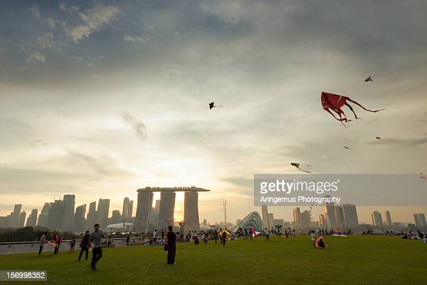 Fly Kite in Singapore
