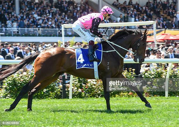 Flying Artie ridden by Hugh Bowman before Coolmore Stud Stakes at Flemington Racecourse on October 29 2016 in Flemington Australia
