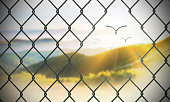 Flying away to freedom like birds with chainlink fence system. ( 3d render )
