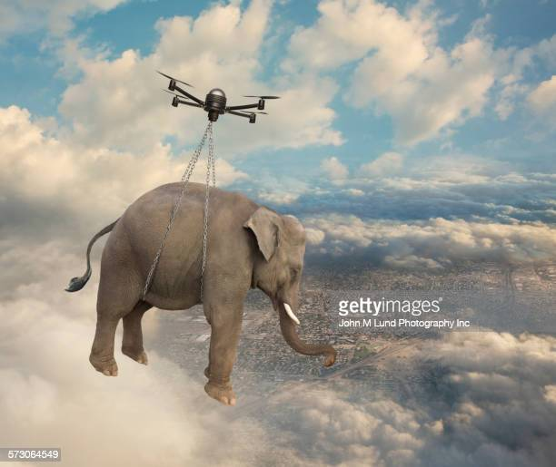 Flying drone carrying elephant in clouds