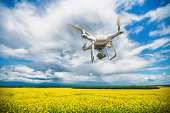 Flying drone quadcopter over the rapeseed field