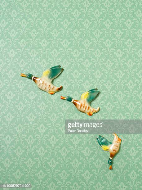 Flying duck ornaments on wallpapered wall, one heading down