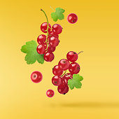 Flying fresh red currant with green leaves on yellow background. Concept of food levitation, high resolution