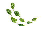 Flying heap of green spinach leaves with water drops isolated on white