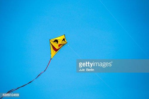 Voar kite : Foto de stock