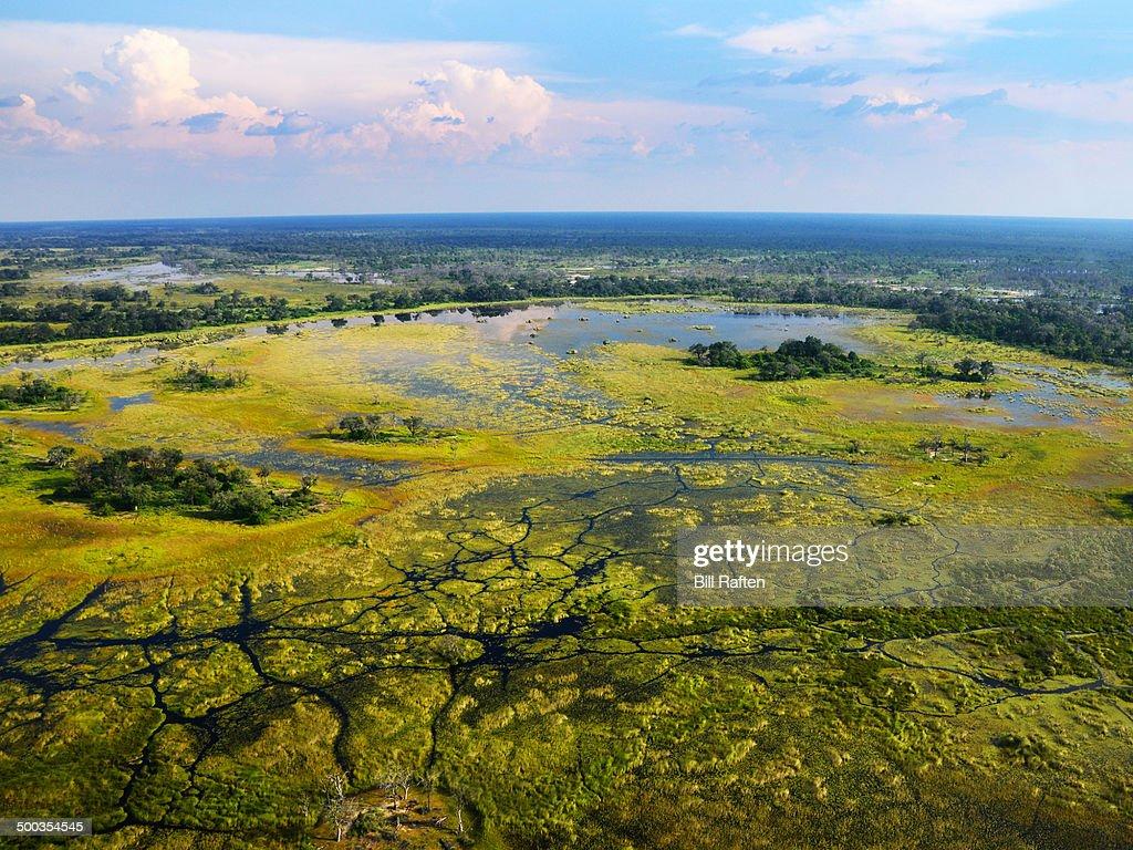 Flying over Okavango Delta - Interesting landscape
