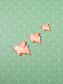 Flying pig ornaments on wallpapered wall, side view