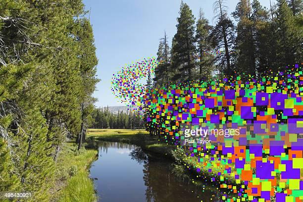 Flying Pixels Through Trees