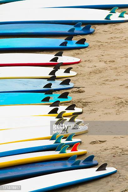 Mousse planches de surf
