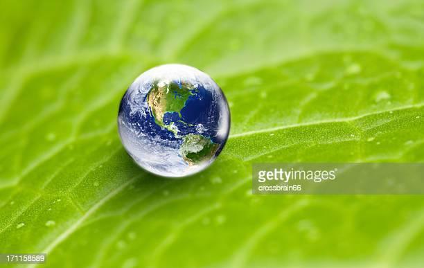Uns Konzentration Welt Globus mit Wasser Tropfen auf green leaf