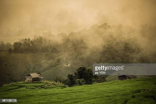 Fog, mounatin home view