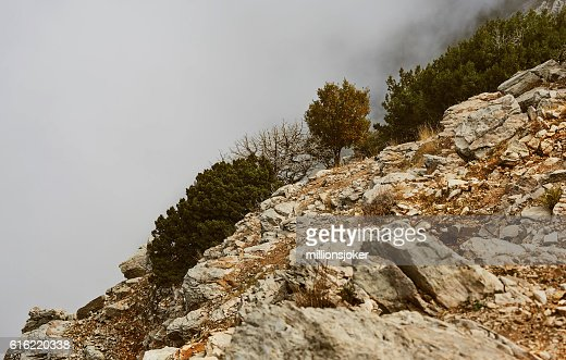 fog mountain slope : Stock Photo