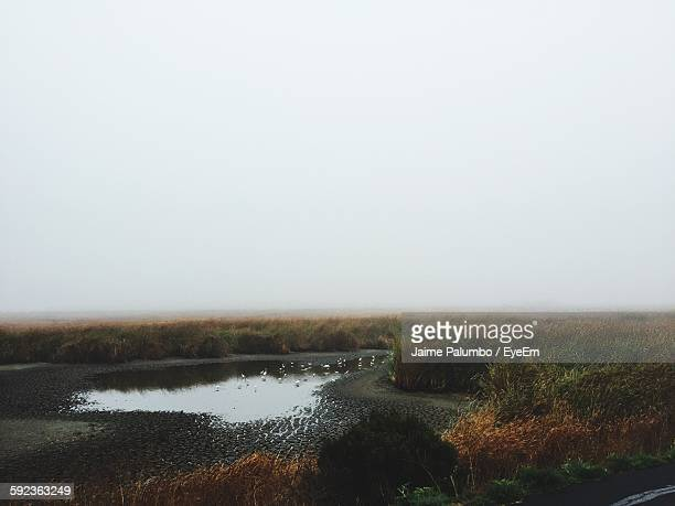 Fog Over Marsh Against Sky