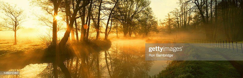 Fog rolling through rural landscape : Stock Photo