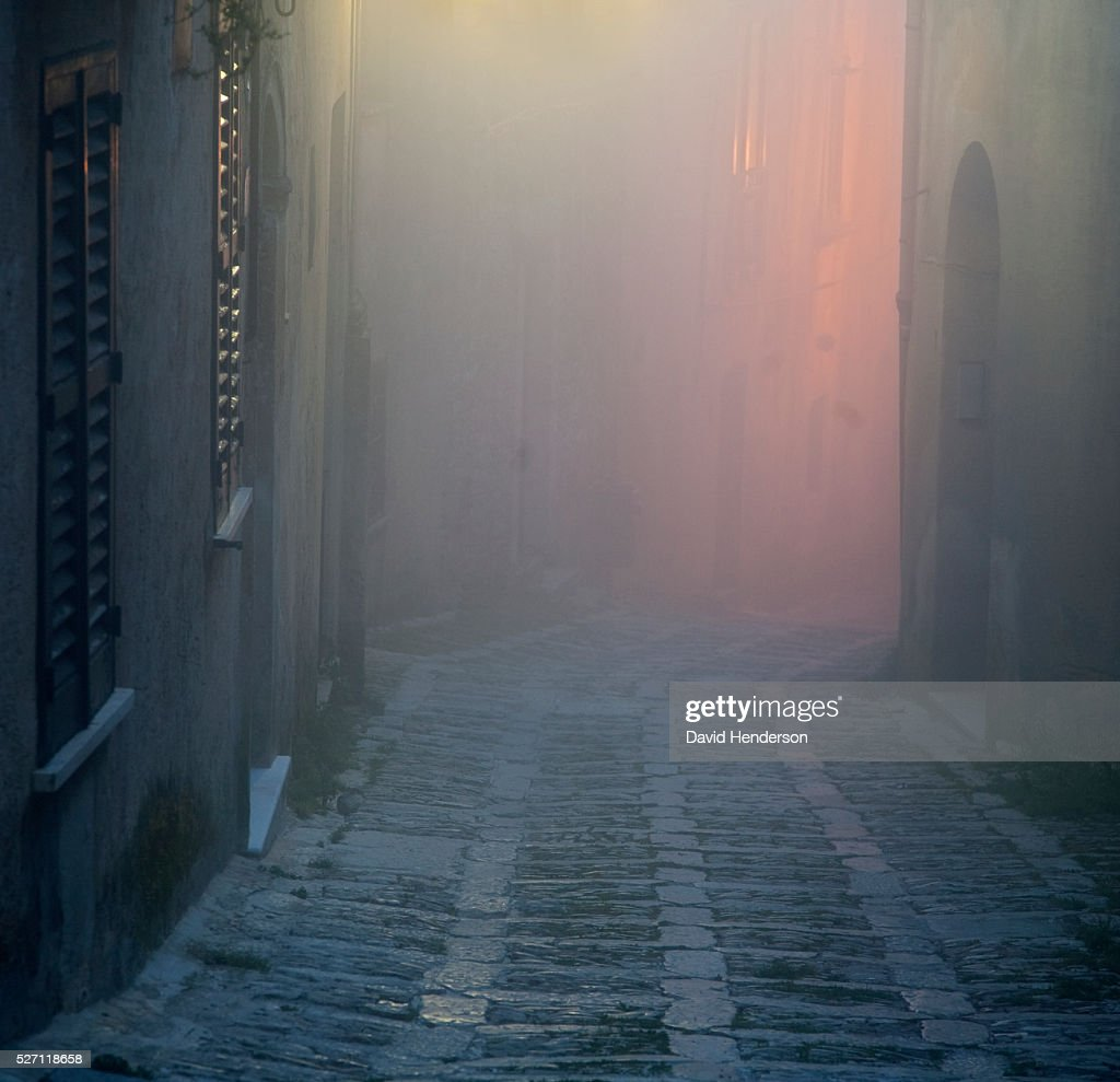 Foggy alley : Stock Photo