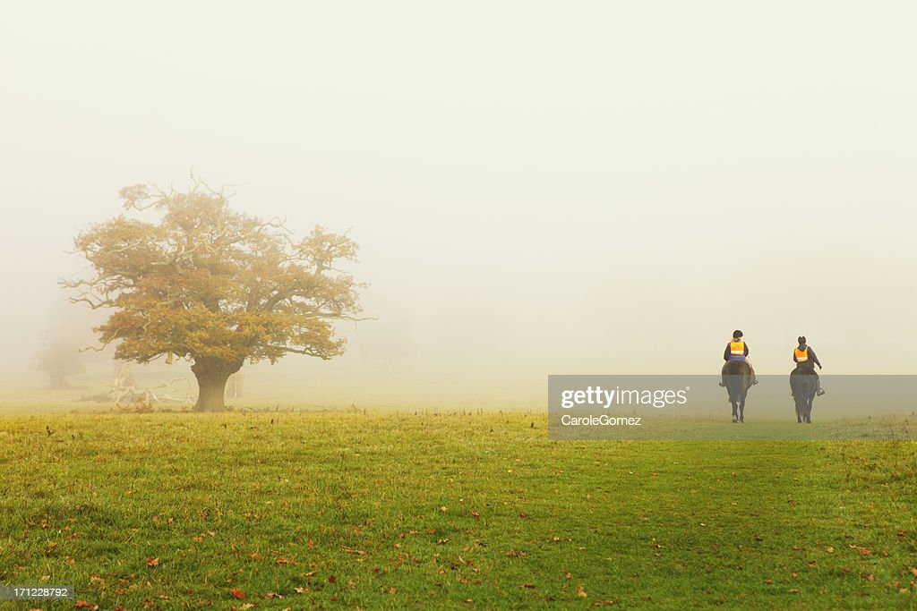 Foggy Autumn Horse Ride : Stock Photo