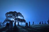 Foggy backlit graveyard