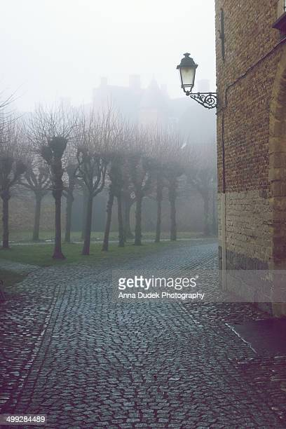 Foggy Belgium...
