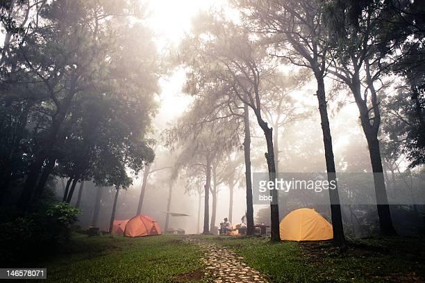 Foggy camp