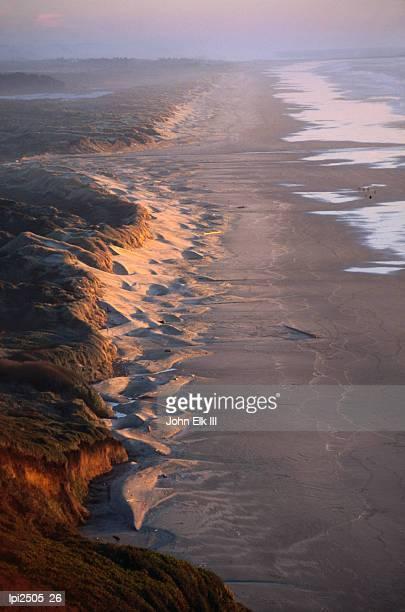 Foggy coastline, Florence, United States of America