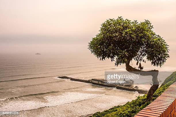 Foggy day on the beach of Lima.